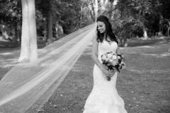 bride and veil,b&w veil photo,bridal portrait