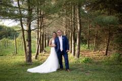 beamer falls manor wedding , trees, sunset